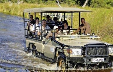 »Wildbeobachtungsfahrt - Okavango und Chobe Fly In-Safari«