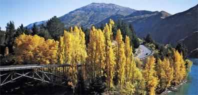 »Region um Queenstown - Zu Hause in Neuseeland«