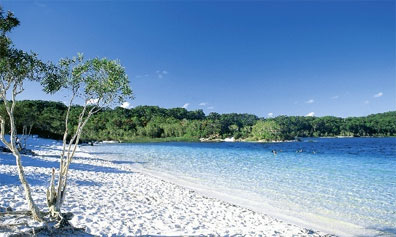 » Fraser Island Wildnis Safari: Lake McKenzie «