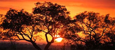 »Der goldene Diamant - Studienreise Namibia und Südafrika«