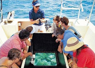 »Faszination Great Barrier Reef - Australien aktiv erleben«
