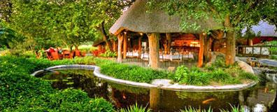 »Thamalakane River Lodge - Reise Hippo Botswana & Namibia«