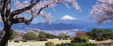 »Große Japan-Reise: Blick auf den Fuji-san«