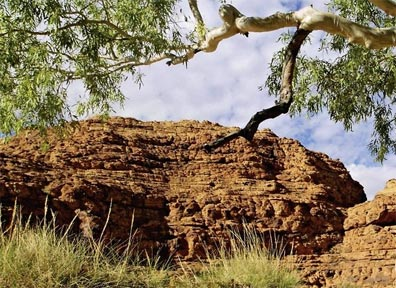 »Höhepunkte Australiens: Kings Canyon, Watarrka Nationalpark«