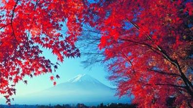 »Herbststimmung vor dem Fuji - Rundreise Japan«