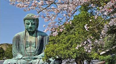 »Großer Buddha, Kamakura - Studienreise Japan intensiv«
