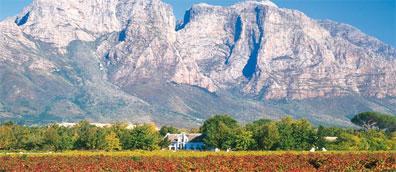 »Südafrikas Süden privat: Verkostung südafrikanischer Weine«