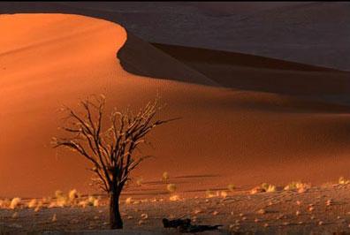 »Namibia Sossusvlei rote Düne - Namibia Rundreise«