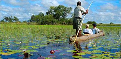 »Okavango-Delta - Moremi Botswana / Namibia«