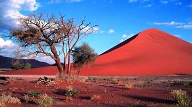 »Naturwunder Namibwüste - Preiswerte Rundreise Namibia«
