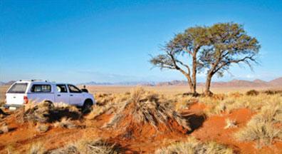 »Kalahari - Mietwagenreisen Namibia Entdeckungstour«