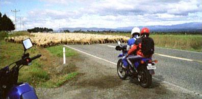 »Neuseeland Coastal Classic Motorradtour Nord- und Südinsel«