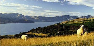»Exklusive Neuseeland Wander- und Erlebnisreise«