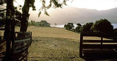 »Famlandschaft in Neuseeland - Wanderreise Neuseeland«