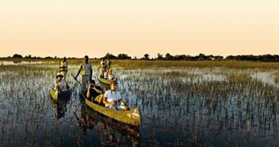 »Erforschen Sie das Okavango-Delta auf einer Mokoro-Fahrt«
