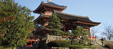 »Studienreise Japan: Sakura, Sushi und Sake«