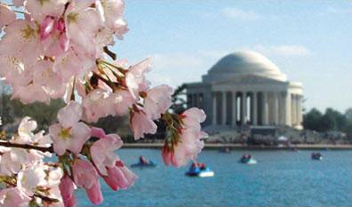 »Jefferson Memorial, Washington D.C. - Reise Ostküste USA«