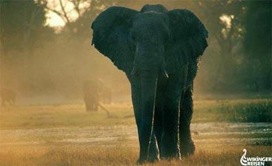 »Wander- & Erlebnisreise: Zu den Naturwundern Südafrikas«