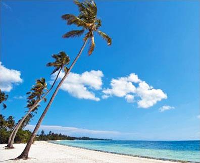 »Sansibar - Traumhafte palmengesäumte Sandstrände«