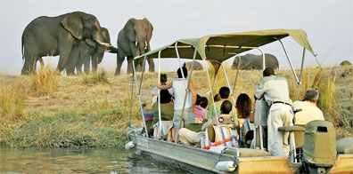 » Safari Afrika pur: Chobe Nationalpark, Botswana «