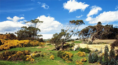 »Rundreise durch Neuseeland - Off the beaten track«