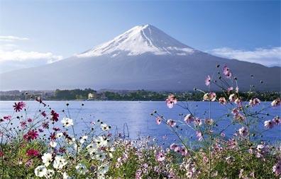 »Japan Reise Bonsai - günstige Japan Rundreise«