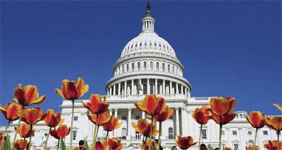 »Washington D.C. Capitol - USA Reise vom Atlantik zum Pazifik«
