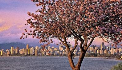 »Reise nach Vancouver - Naturereignis Rocky Mountains«