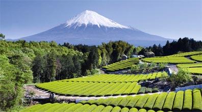 »16-Tage-Tour über Japans vier Hauptinseln - Rundreise Japan«