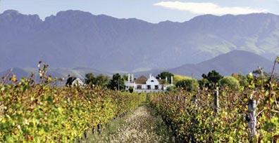 »Excelsior  Wine Estate - Preistipp Höhepunkte Südafrikas«