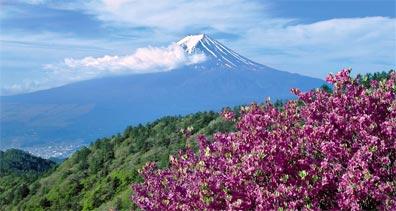 »Fuji Japanreise: 13 Tage/12 Nächte ab/bis Deutschland«
