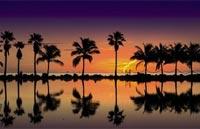 »Entspanntes Florida Mietwagentour USA«