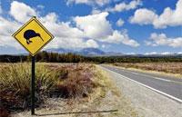 »South Island Highlights - Mietwagenreise Neuseeland«