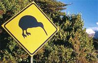»Neuseeland erfahren - Mietwagenrundreisen Neuseeland«