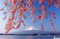 »Japans Höhepunkte aktiv erleben - Aktivreise Japan«