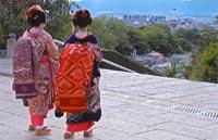 »Zauberhaftes Japan - Rundreise Japan«