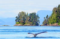 »Naturwunder Westkanada - Kanada 15-Tage-Erlebnisreise«