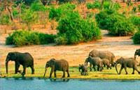 »Limpopo Rundreise - Namibia / Botswana / S�dafrika«