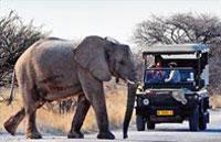 »Namibia Entdeckungstour - Namibia Mietwagenreise«