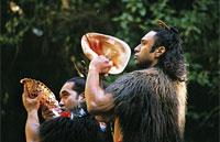 »Neuseeland für Naturfreunde - Rundreise Neuseeland«