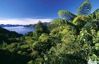 »Rundreise Neuseeland - das schönste Ende der Welt«