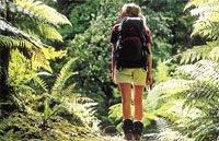 »Neuseeland aktiv entdecken - Wanderreise Neuseeland«