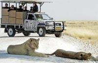 »Gondwana Collection: Namibia mit Herz und Seele«