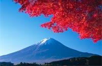 »Reise durch Japan: Von Hokkaido nach Kyushu«
