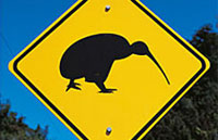 »Große Mietwagenreise Südinsel Neuseeland«