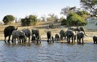 »Namibia Botswana Simbabwe - Auf den Spuren David Livingstone«