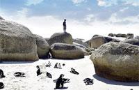 »Best of South Africa - Die ganze Welt in einem Land«
