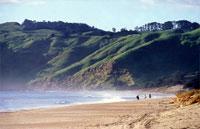 »Reitferien Neuseeland Warrior Trail Strände und Farmland«