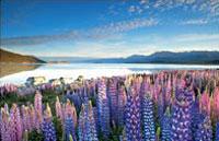 »Klassische Neuseeland Rundreise«