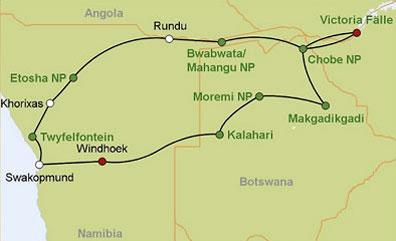 »Das wilde Herz Afrikas: Zebras an einer Wasserstelle«